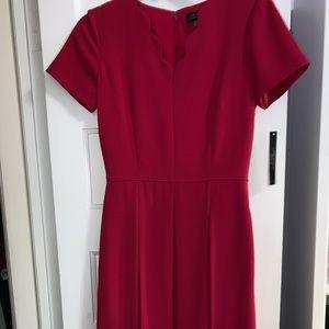 NWT pink tahari dress